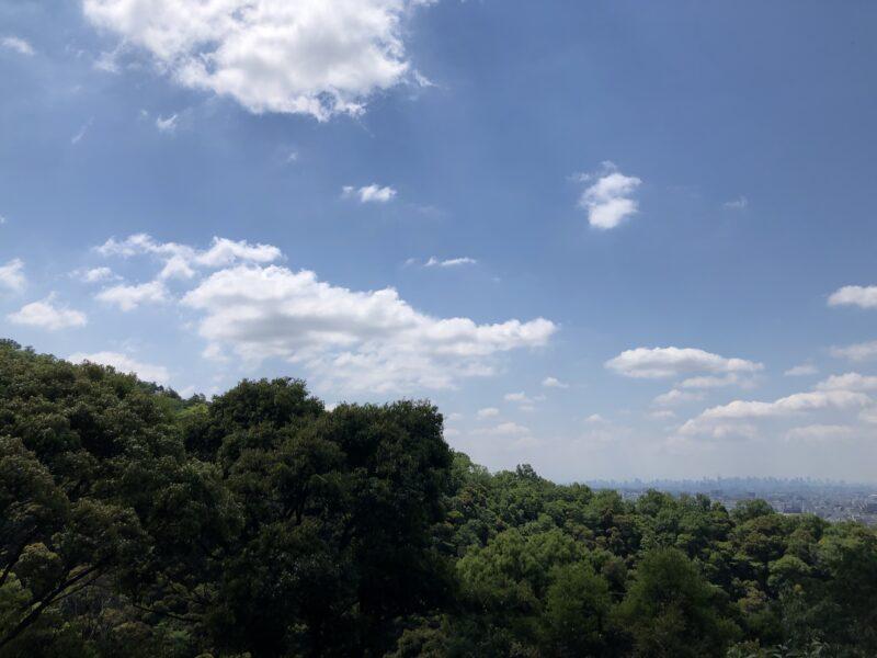 新緑の箕面山